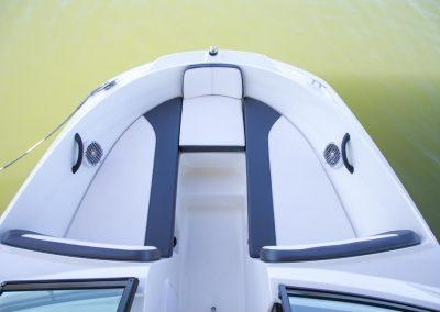 Sea Ray 21 SPX (75)