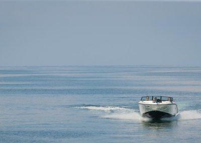 SeaRay-190-SPX-outboard (16)