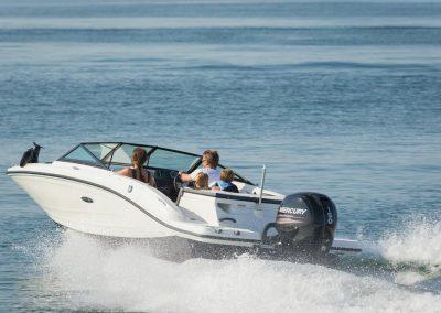 SeaRay-190-SPX-outboard (17)