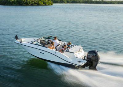 SeaRay-190-SPX-outboard (39)
