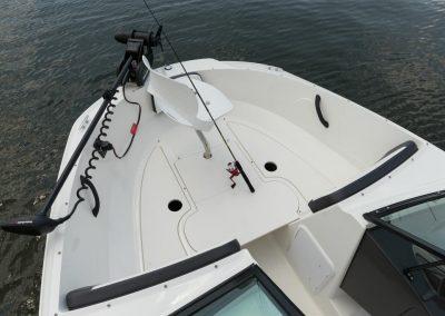 SeaRay-190-SPX-outboard (48)