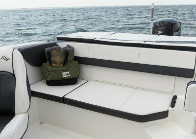 SeaRay-190-SPX-outboard (51)