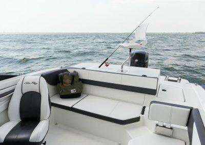 SeaRay-190-SPX-outboard (53)