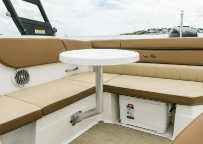 SeaRay-230-SPX-outboard (69)